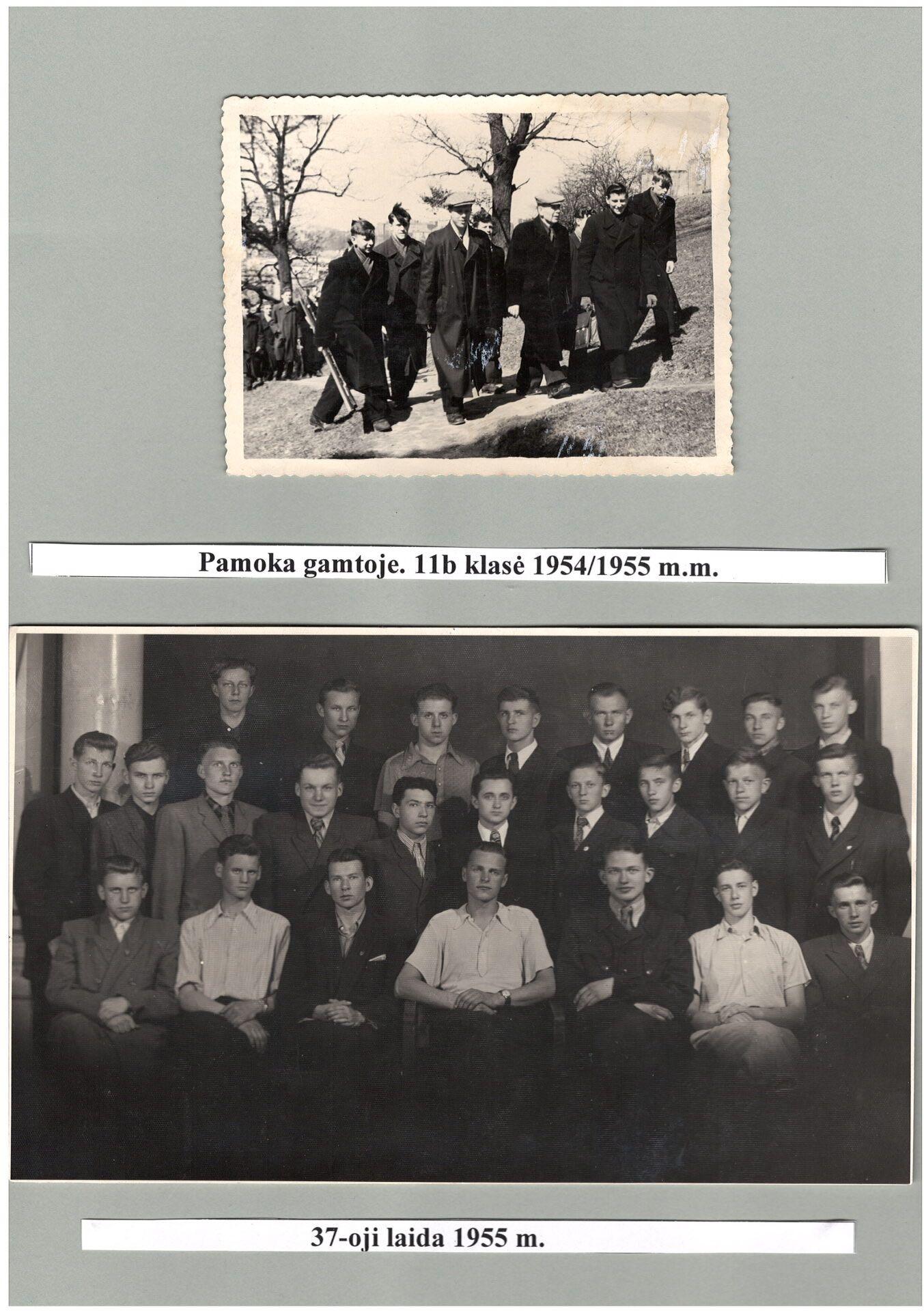1954 m. - 1955 m.